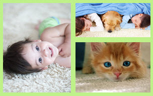 Child Pet safe products