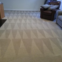 carpet cleaning chicago
