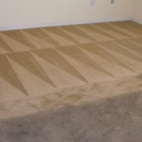 carpet cleaning chicago before after