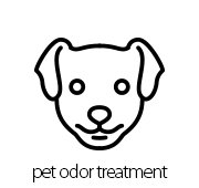 Top 5 Pet Odor Treatment Company Services